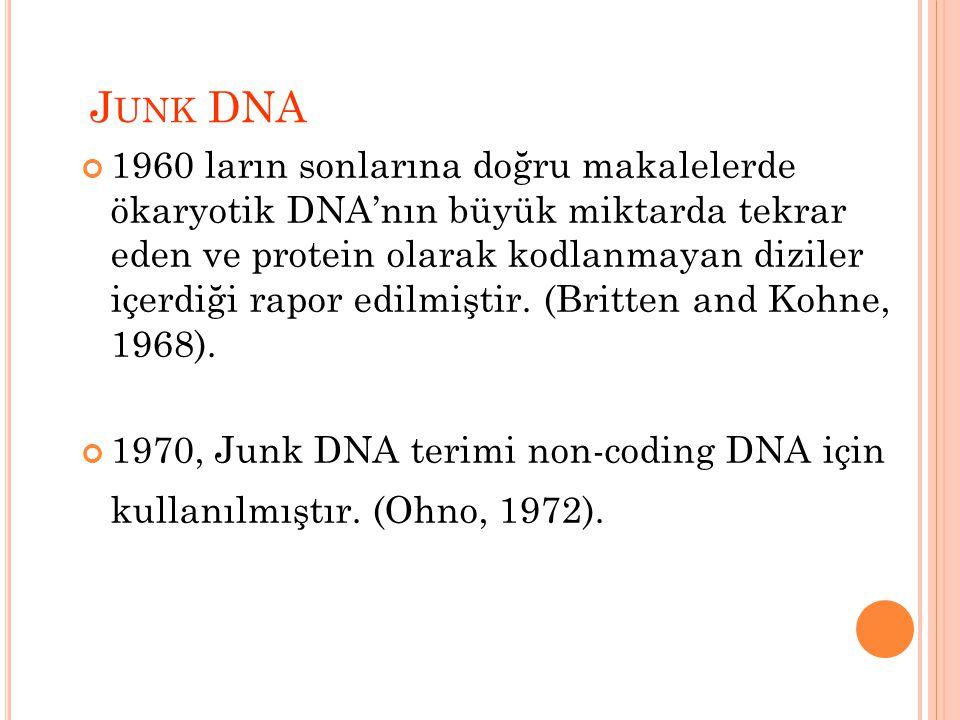 J UNK DNA 1960 ların sonlarına doğru makalelerde ökaryotik DNA'nın büyük miktarda tekrar eden ve protein olarak kodlanmayan diziler içerdiği rapor edilmiştir.