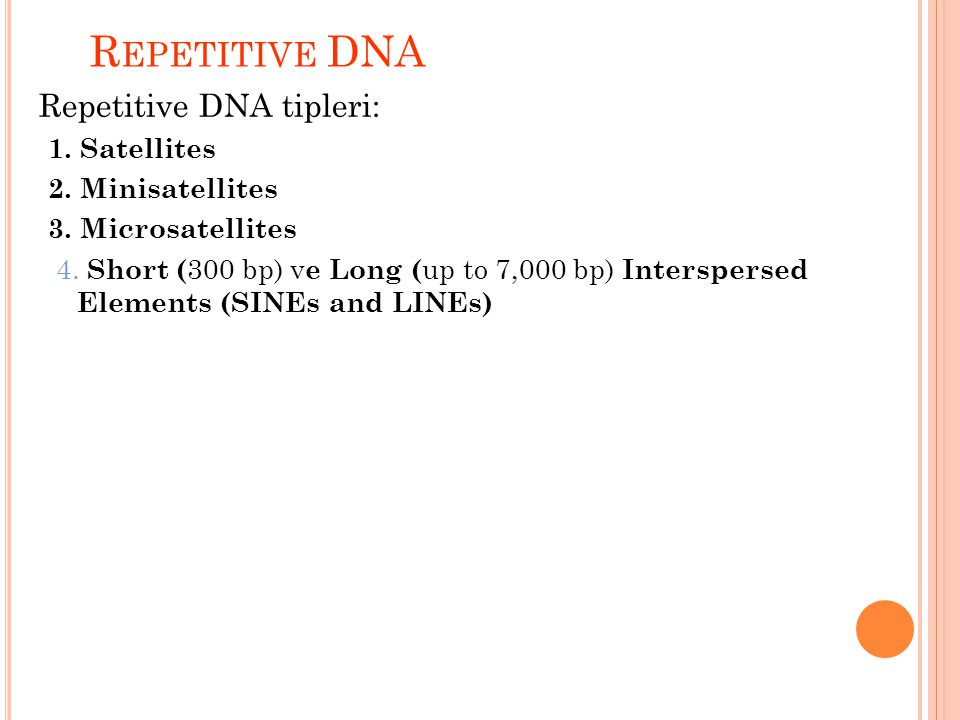 R EPETITIVE DNA Repetitive DNA tipleri: 1. Satellites 2. Minisatellites 3. Microsatellites 4. 4. Short ( 300 bp) v e Long ( up to 7,000 bp) Interspers