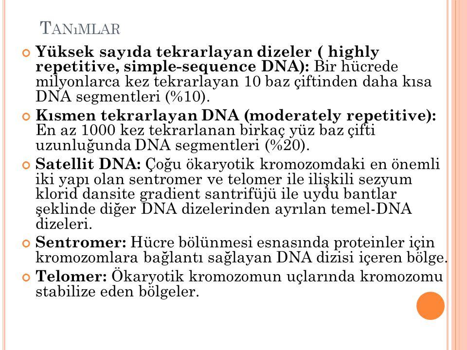 T ANıMLAR Yüksek sayıda tekrarlayan dizeler ( highly repetitive, simple-sequence DNA): Bir hücrede milyonlarca kez tekrarlayan 10 baz çiftinden daha kısa DNA segmentleri (%10).