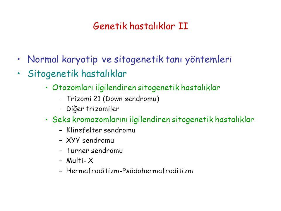 Genetik hastalıklar II Normal karyotip ve sitogenetik tanı yöntemleri Sitogenetik hastalıklar Otozomları ilgilendiren sitogenetik hastalıklar –Trizomi