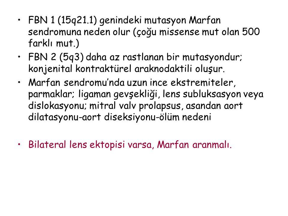 FBN 1 (15q21.1) genindeki mutasyon Marfan sendromuna neden olur (çoğu missense mut olan 500 farklı mut.) FBN 2 (5q3) daha az rastlanan bir mutasyondur