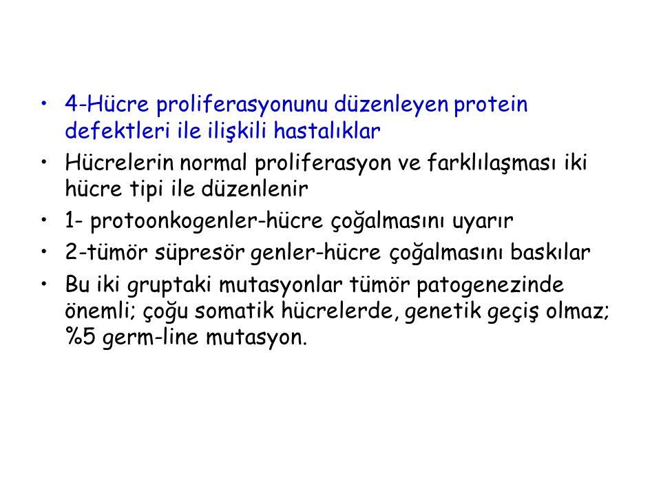 4-Hücre proliferasyonunu düzenleyen protein defektleri ile ilişkili hastalıklar Hücrelerin normal proliferasyon ve farklılaşması iki hücre tipi ile dü