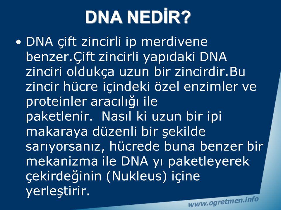 Tüm Canlıların DNA sı vardır. İnsanların, ağaçların, kedilerin, sivrisineklerin, elmanın hatta bizi hasta yapan mikropların da DNA'sı vardır. Bazı can