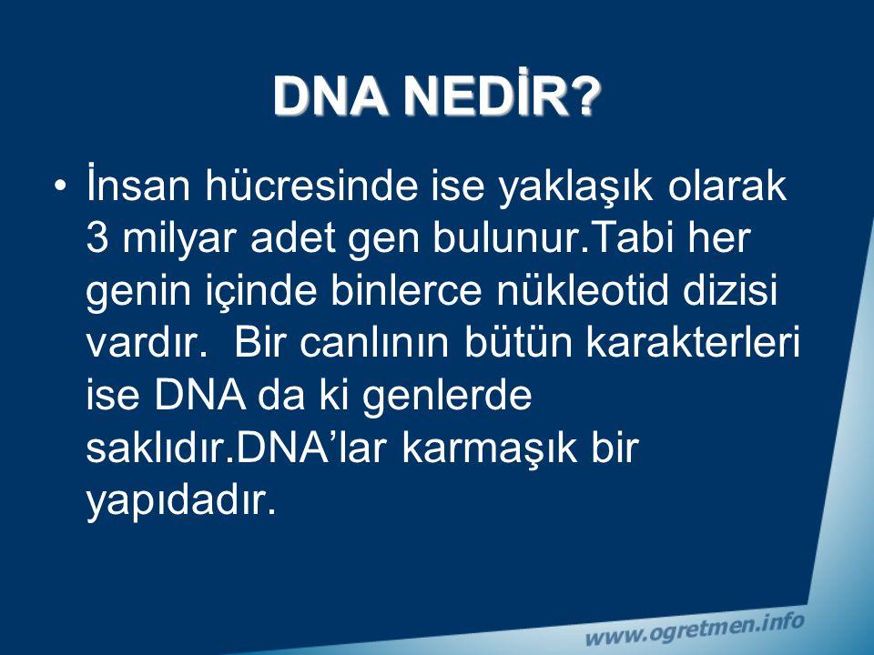 DNA uzun bir zincir olmasına karşılık üzerindeki baz sıraları bir düzen içerisinde taksim edilmiştir. Taksim edilen bu baz gruplarına ise
