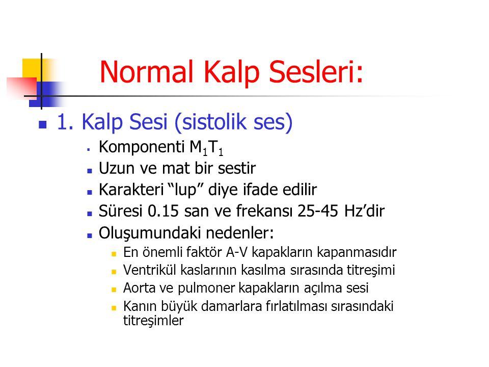 """Normal Kalp Sesleri: 1. Kalp Sesi (sistolik ses)  Komponenti M 1 T 1 Uzun ve mat bir sestir Karakteri """"lup"""" diye ifade edilir Süresi 0.15 san ve frek"""