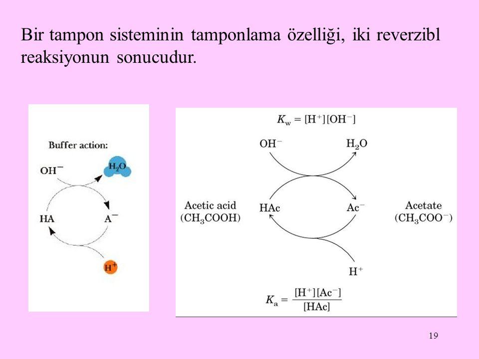 19 Bir tampon sisteminin tamponlama özelliği, iki reverzibl reaksiyonun sonucudur.