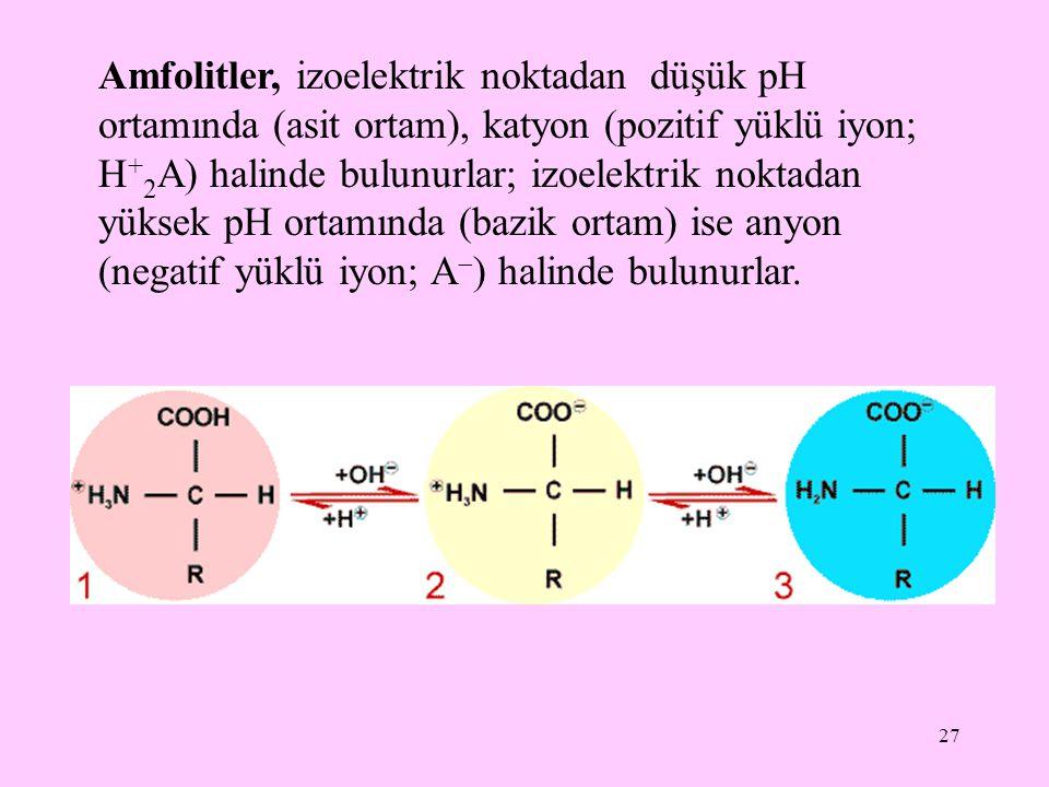 27 Amfolitler, izoelektrik noktadan düşük pH ortamında (asit ortam), katyon (pozitif yüklü iyon; H + 2 A) halinde bulunurlar; izoelektrik noktadan yük