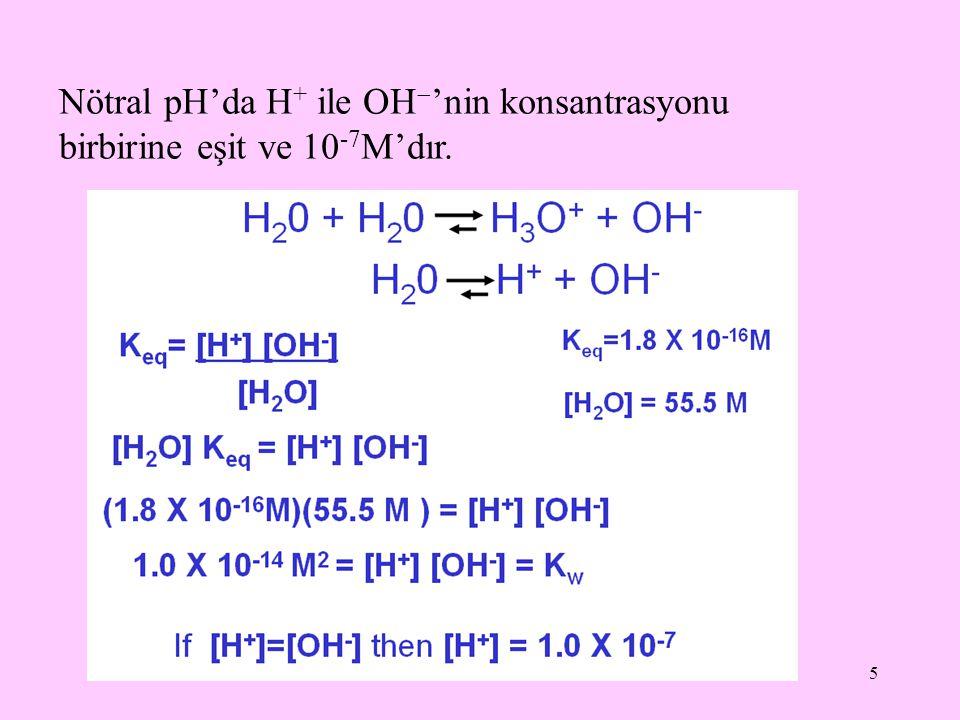 5 Nötral pH'da H + ile OH  'nin konsantrasyonu birbirine eşit ve 10 -7 M'dır.