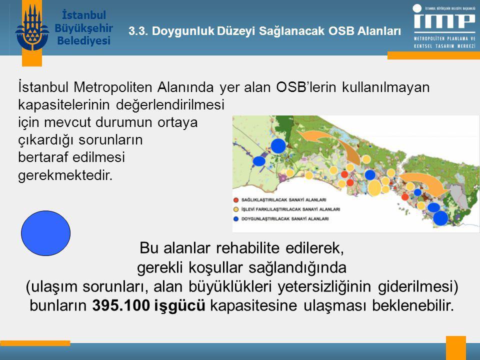 İstanbul Büyükşehir Belediyesi 3.3.