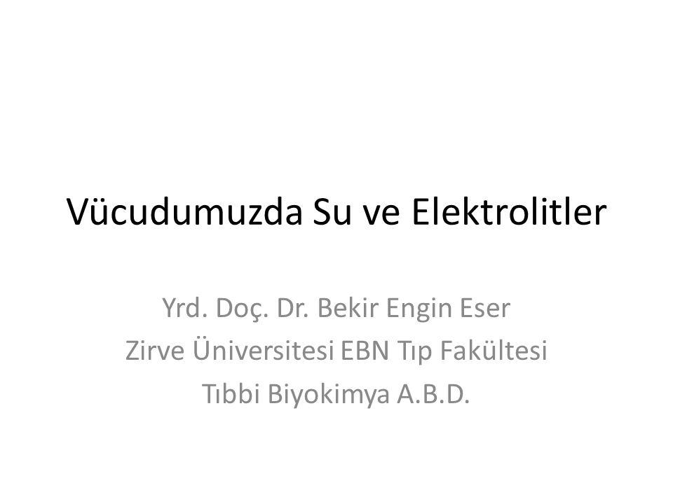 Vücudumuzda Su ve Elektrolitler Yrd. Doç. Dr. Bekir Engin Eser Zirve Üniversitesi EBN Tıp Fakültesi Tıbbi Biyokimya A.B.D.