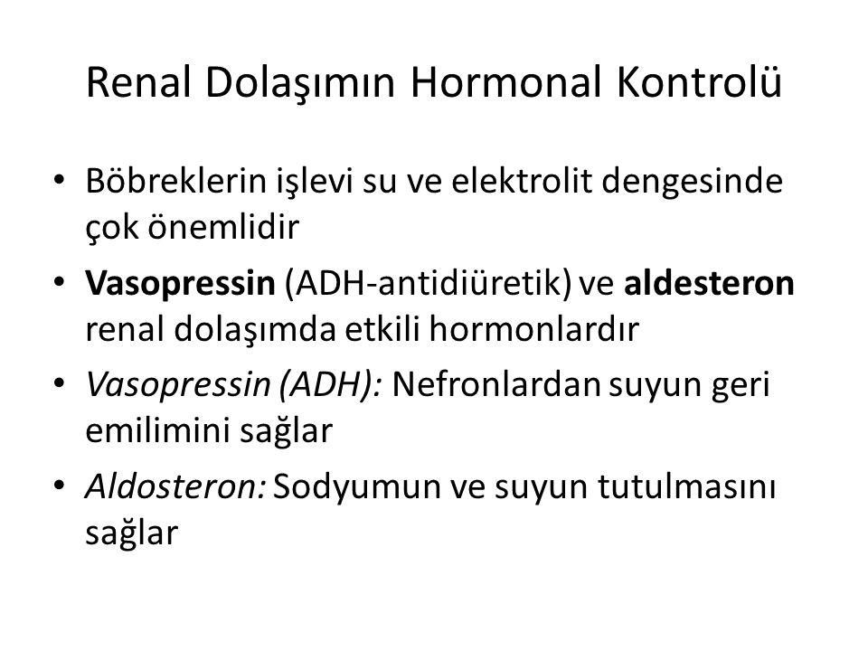 Renal Dolaşımın Hormonal Kontrolü Böbreklerin işlevi su ve elektrolit dengesinde çok önemlidir Vasopressin (ADH-antidiüretik) ve aldesteron renal dola