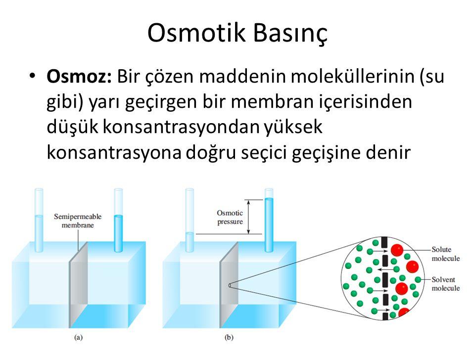Osmotik Basınç Osmoz: Bir çözen maddenin moleküllerinin (su gibi) yarı geçirgen bir membran içerisinden düşük konsantrasyondan yüksek konsantrasyona d
