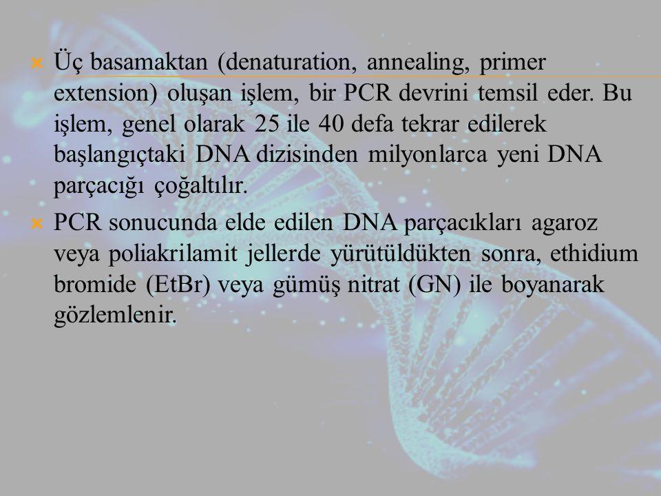  Üç basamaktan (denaturation, annealing, primer extension) oluşan işlem, bir PCR devrini temsil eder.