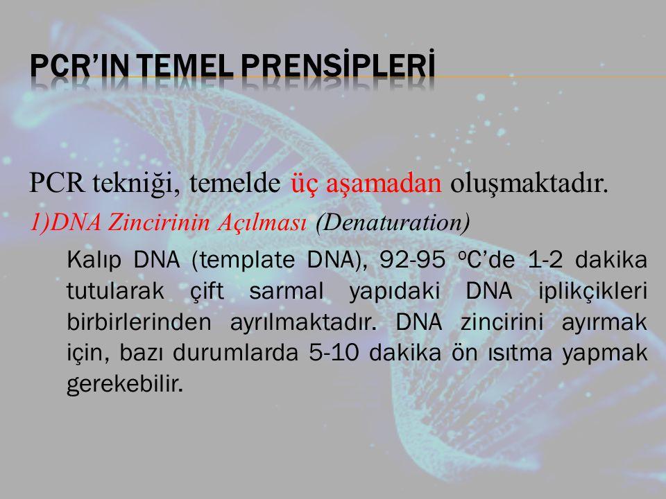 PCR tekniği, temelde üç aşamadan oluşmaktadır.