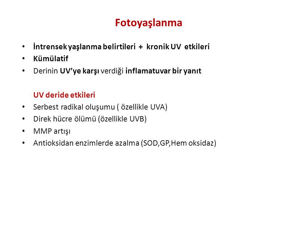 Fotoyaşlanma İntrensek yaşlanma belirtileri + kronik UV etkileri Kümülatif Derinin UV'ye karşı verdiği inflamatuvar bir yanıt UV deride etkileri Serbest radikal oluşumu ( özellikle UVA) Direk hücre ölümü (özellikle UVB) MMP artışı Antioksidan enzimlerde azalma (SOD,GP,Hem oksidaz)