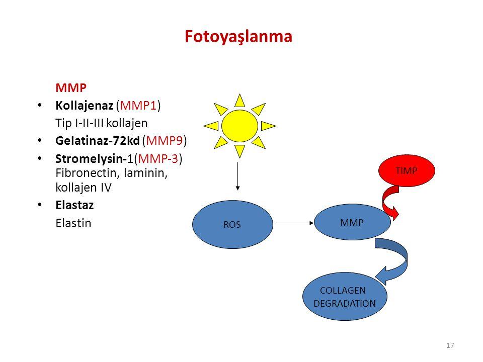 17 ROS MMP COLLAGEN DEGRADATION TIMP Fotoyaşlanma MMP Kollajenaz (MMP1) Tip I-II-III kollajen Gelatinaz-72kd (MMP9) Stromelysin-1(MMP-3) Fibronectin, laminin, kollajen IV Elastaz Elastin