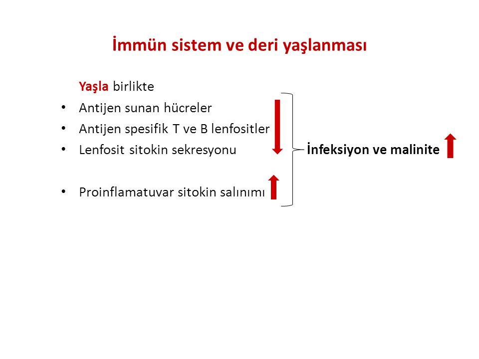 İmmün sistem ve deri yaşlanması Yaşla birlikte Antijen sunan hücreler Antijen spesifik T ve B lenfositler Lenfosit sitokin sekresyonu İnfeksiyon ve malinite Proinflamatuvar sitokin salınımı