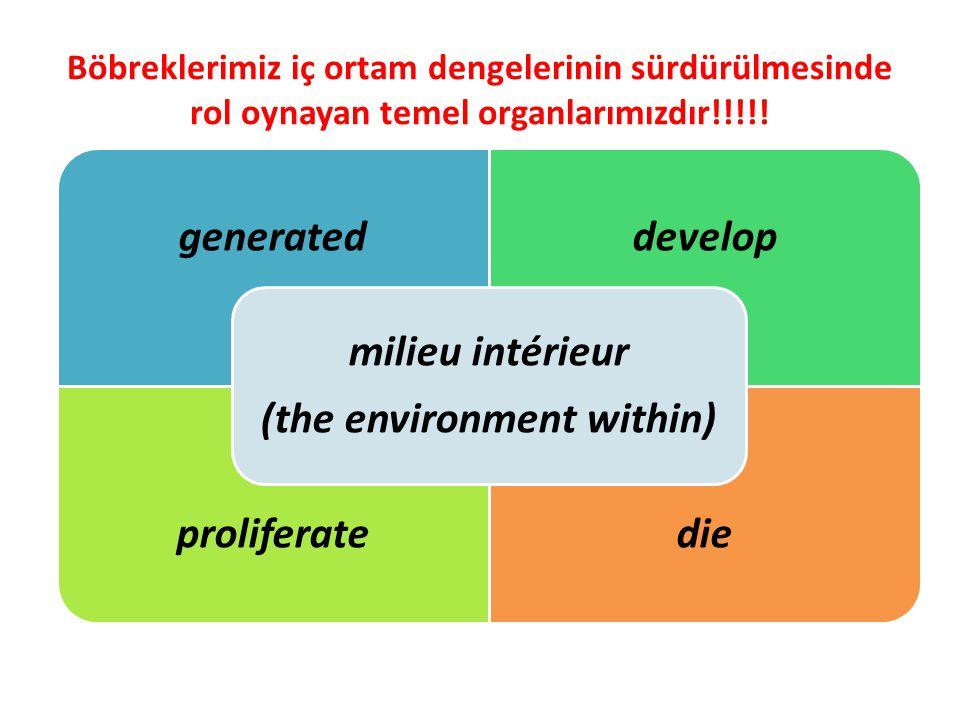 Böbreklerimiz iç ortam dengelerinin sürdürülmesinde rol oynayan temel organlarımızdır!!!!! generateddevelop proliferatedie milieu intérieur (the envir