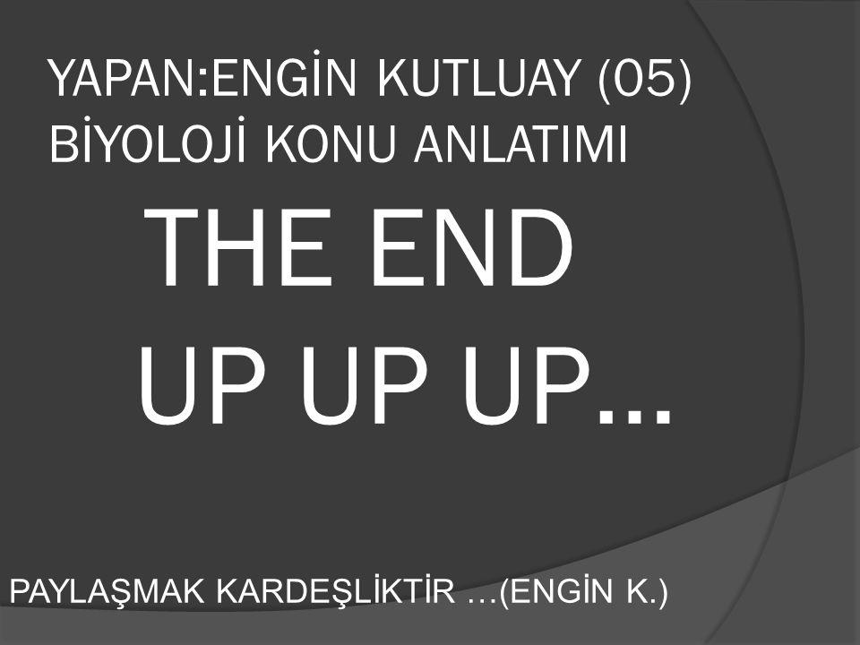 YAPAN:ENGİN KUTLUAY (05) BİYOLOJİ KONU ANLATIMI THE END UP UP UP… PAYLAŞMAK KARDEŞLİKTİR …(ENGİN K.)