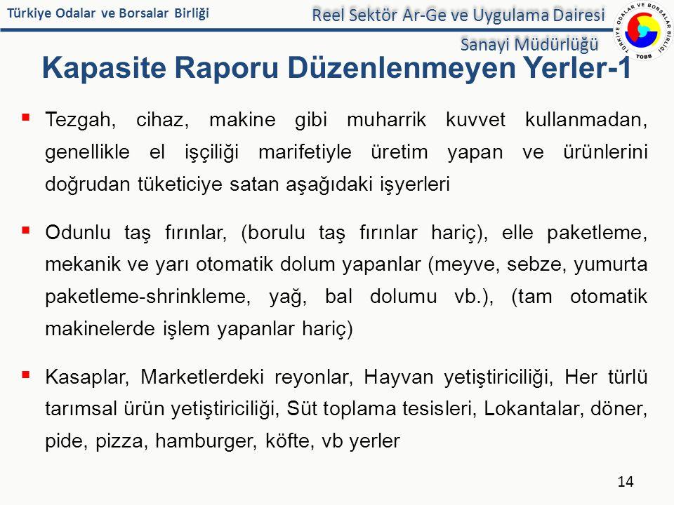 Türkiye Odalar ve Borsalar Birliği Kapasite Raporu Düzenlenmeyen Yerler-1  Tezgah, cihaz, makine gibi muharrik kuvvet kullanmadan, genellikle el işçi