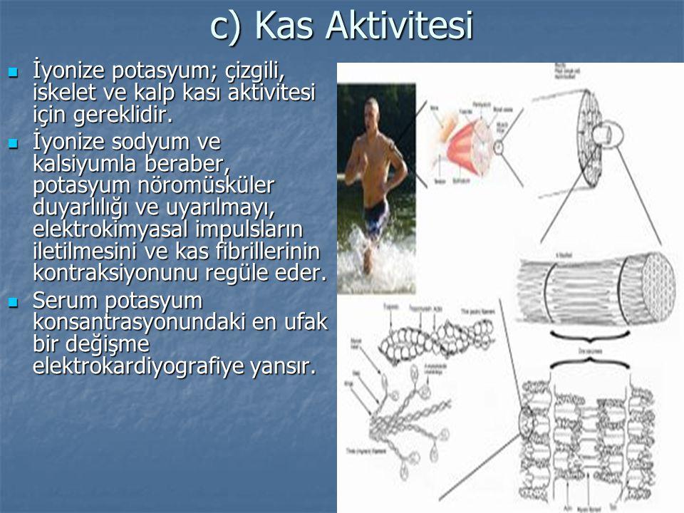 c) Kas Aktivitesi İyonize potasyum; çizgili, iskelet ve kalp kası aktivitesi için gereklidir. İyonize potasyum; çizgili, iskelet ve kalp kası aktivite