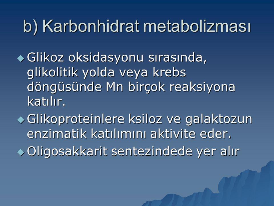 b) Karbonhidrat metabolizması  Glikoz oksidasyonu sırasında, glikolitik yolda veya krebs döngüsünde Mn birçok reaksiyona katılır.  Glikoproteinlere