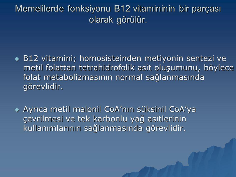 Memelilerde fonksiyonu B12 vitamininin bir parçası olarak görülür.  B12 vitamini; homosisteinden metiyonin sentezi ve metil folattan tetrahidrofolik