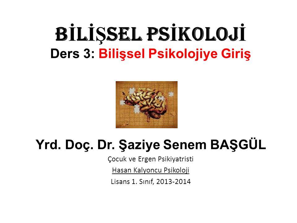 B İ L İŞ SEL PS İ KOLOJ İ Ders 3: Bilişsel Psikolojiye Giriş Yrd.