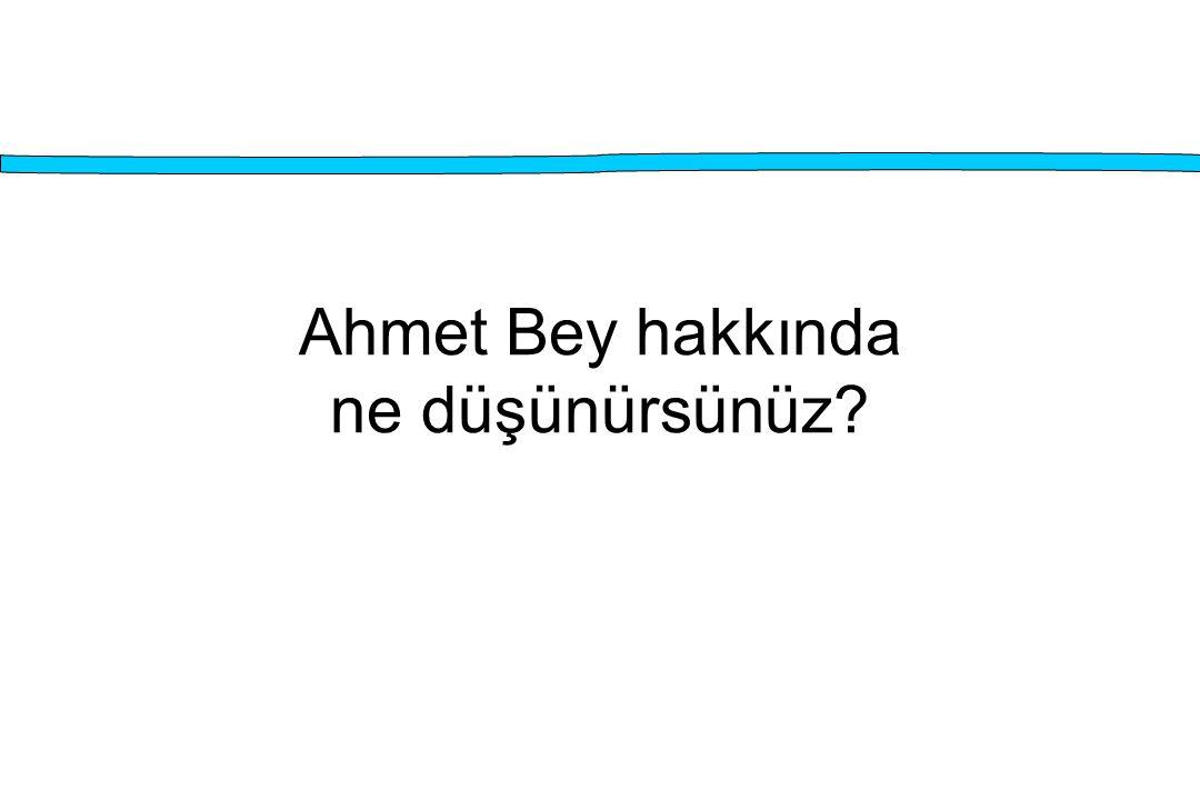 Ahmet Bey hakkında ne düşünürsünüz?