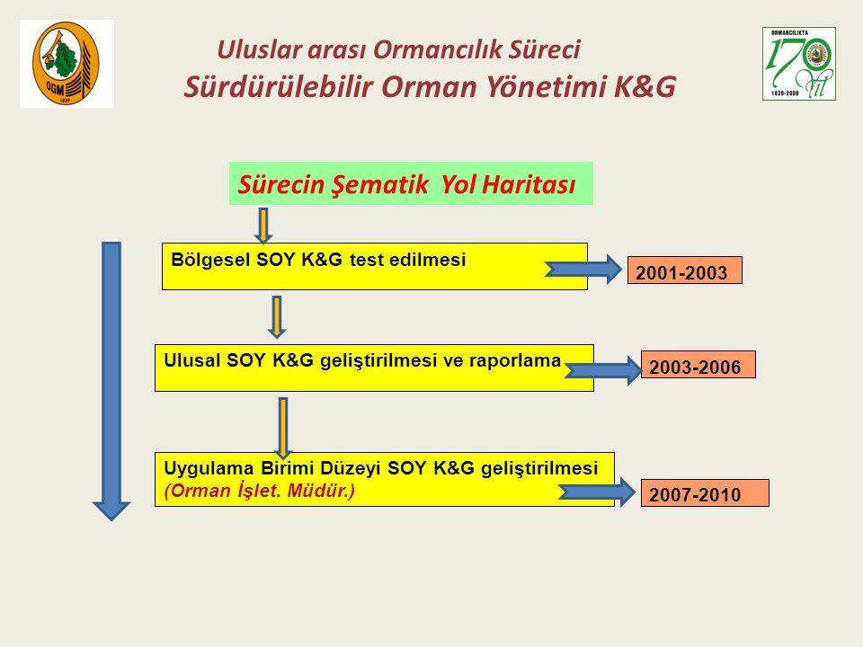 Uluslar arası Ormancılık Süreci Sürdürülebilir Orman Yönetimi K&G Bölgesel SOY K&G test edilmesi 2001-2003 Ulusal SOY K&G geliştirilmesi ve raporlama 2003-2006 Uygulama Birimi Düzeyi SOY K&G geliştirilmesi (Orman İşlet.