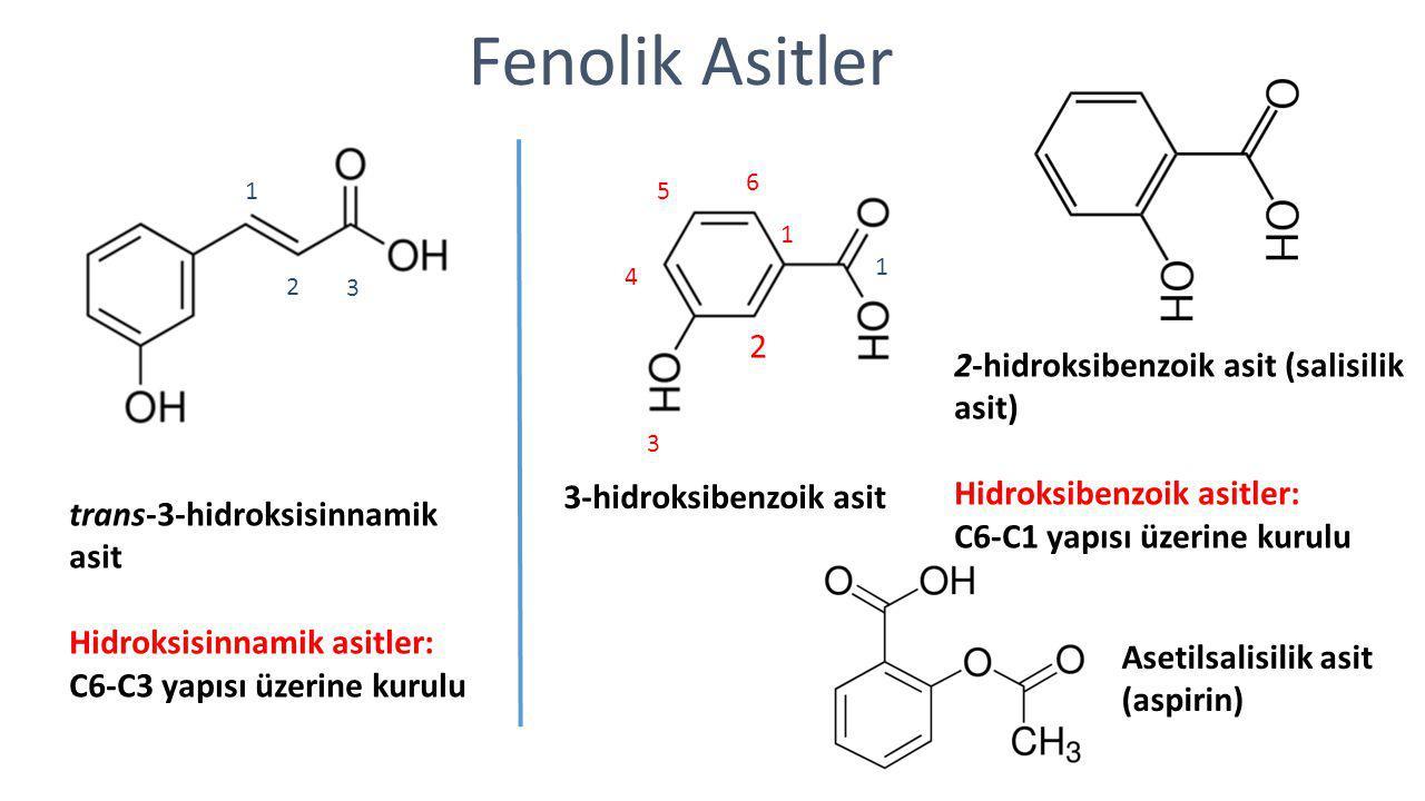 Fenolik Asitler 2-hidroksibenzoik asit (salisilik asit) Hidroksibenzoik asitler: C6-C1 yapısı üzerine kurulu trans-3-hidroksisinnamik asit Hidroksisin