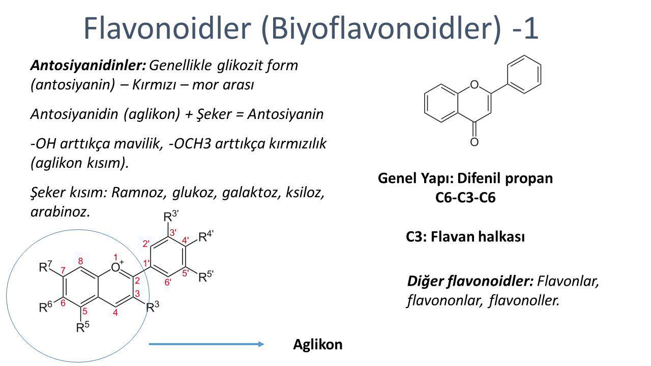 Flavonoidler (Biyoflavonoidler) -1 Antosiyanidinler: Genellikle glikozit form (antosiyanin) – Kırmızı – mor arası Antosiyanidin (aglikon) + Şeker = An