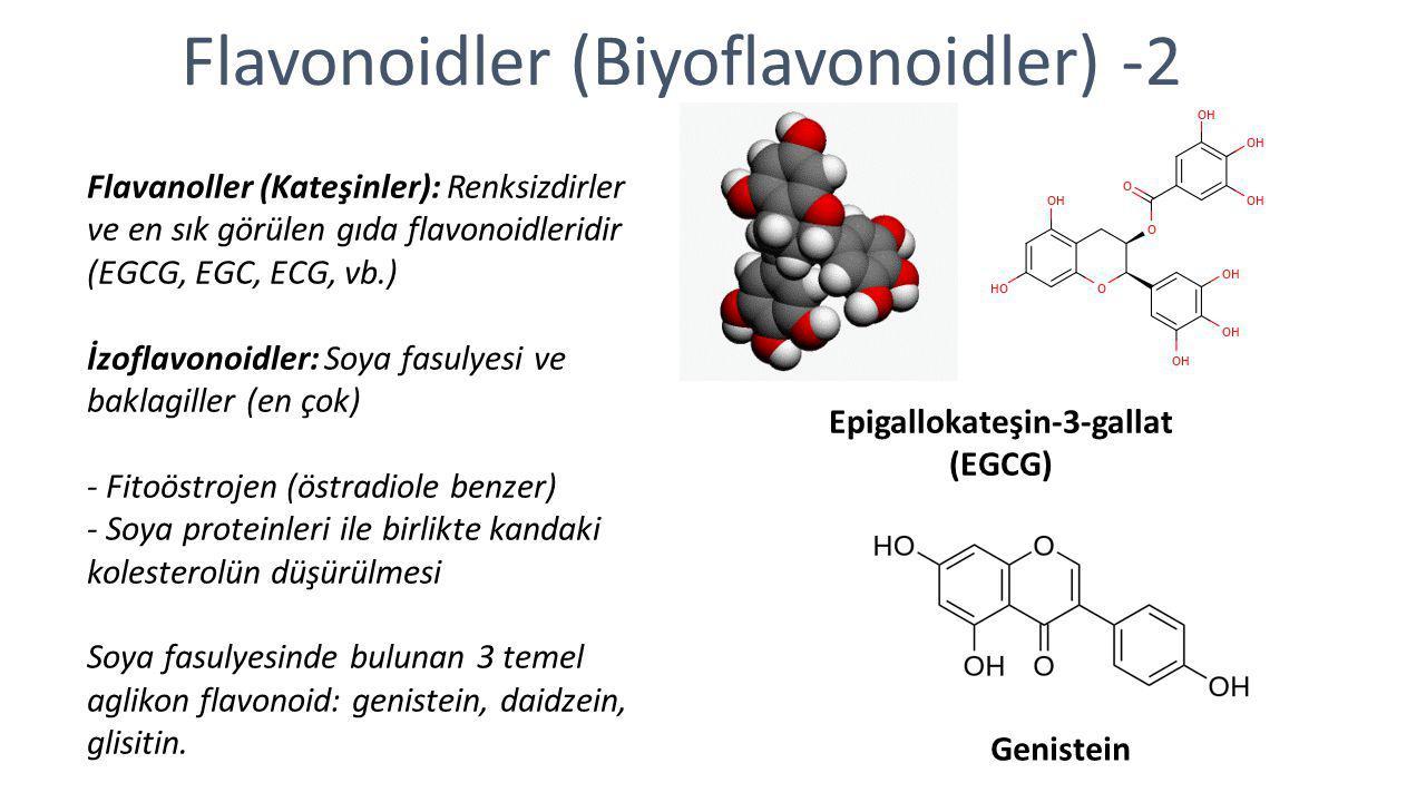 Flavonoidler (Biyoflavonoidler) -2 Flavanoller (Kateşinler): Renksizdirler ve en sık görülen gıda flavonoidleridir (EGCG, EGC, ECG, vb.) İzoflavonoidl