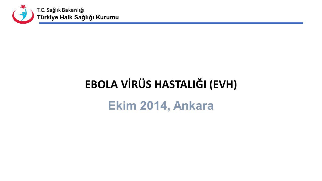 T.C. Sağlık Bakanlığı Türkiye Halk Sağlığı Kurumu T.C. Sağlık Bakanlığı Türkiye Halk Sağlığı Kurumu EBOLA VİRÜS HASTALIĞI (EVH) Ekim 2014, Ankara