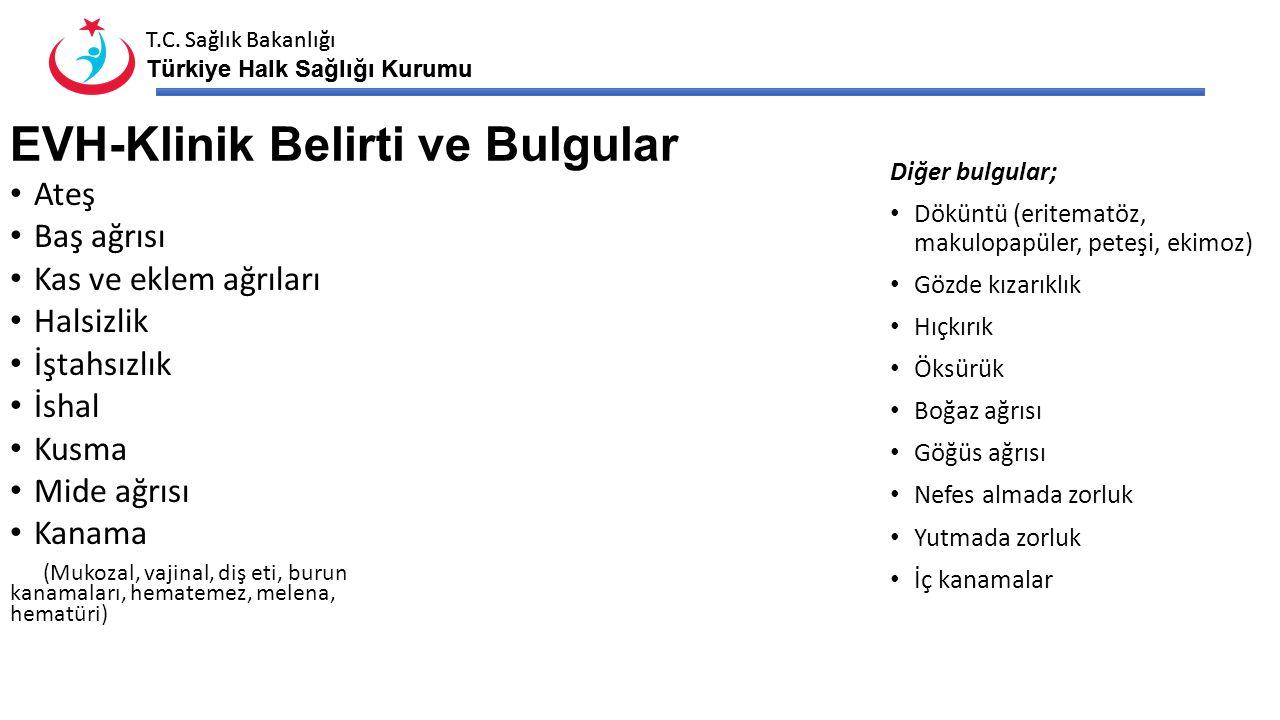 T.C. Sağlık Bakanlığı Türkiye Halk Sağlığı Kurumu T.C. Sağlık Bakanlığı Türkiye Halk Sağlığı Kurumu EVH-Klinik Belirti ve Bulgular Ateş Baş ağrısı Kas