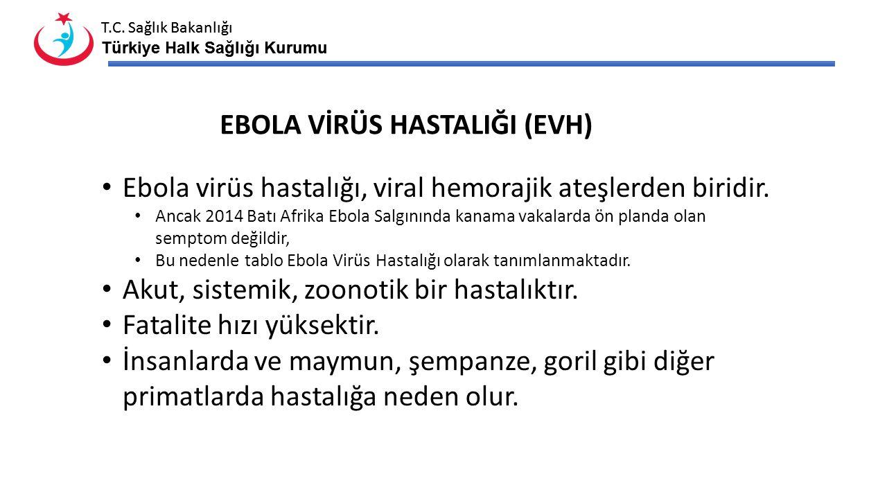 T.C. Sağlık Bakanlığı Türkiye Halk Sağlığı Kurumu T.C. Sağlık Bakanlığı Türkiye Halk Sağlığı Kurumu Ebola virüs hastalığı, viral hemorajik ateşlerden