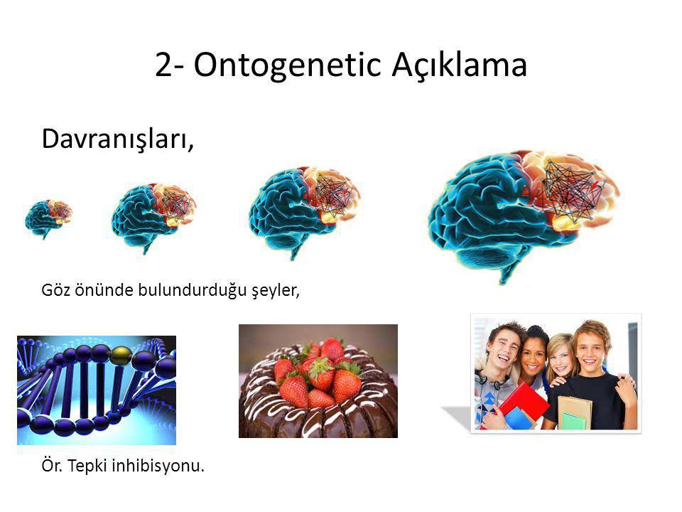 2- Ontogenetic Açıklama Davranışları, Göz önünde bulundurduğu şeyler, Ör. Tepki inhibisyonu.
