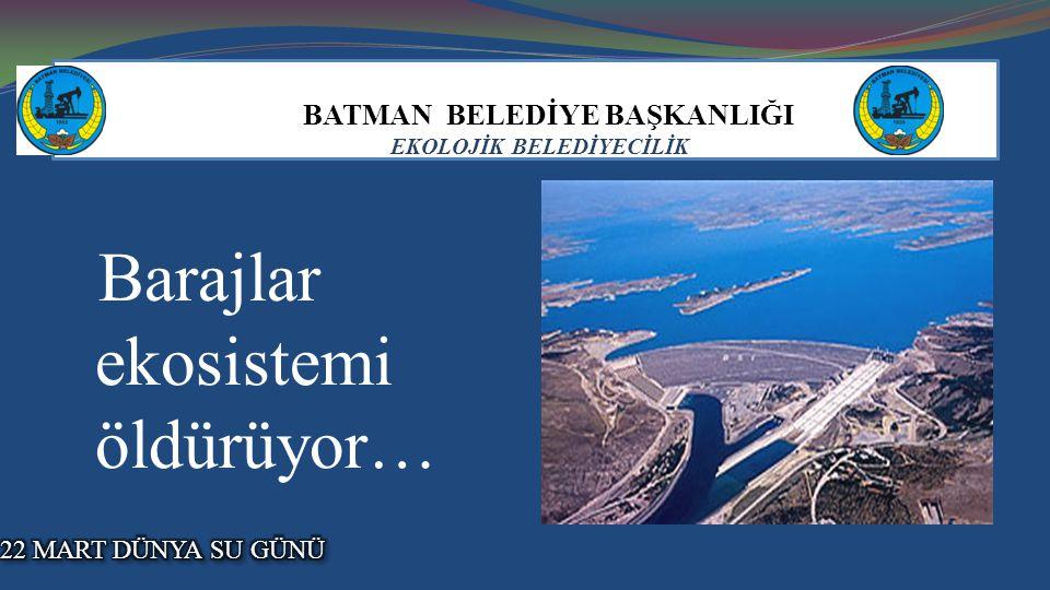 BATMAN BELEDİYE BAŞKANLIĞI EKOLOJİK BELEDİYECİLİK Barajlar ekosistemi öldürüyor…
