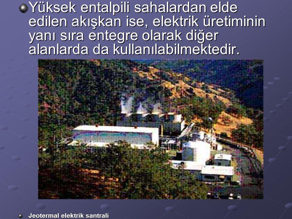 Yüksek entalpili sahalardan elde edilen akışkan ise, elektrik üretiminin yanı sıra entegre olarak diğer alanlarda da kullanılabilmektedir. Jeotermal e