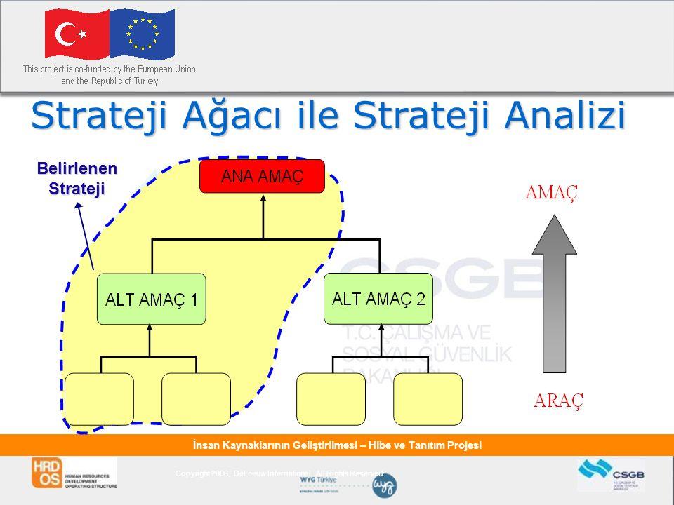 İnsan Kaynaklarının Geliştirilmesi – Hibe ve Tanıtım Projesi Strateji Ağacı ile Strateji Analizi Copyright 2006. DeLeeuw International. All Rights Res