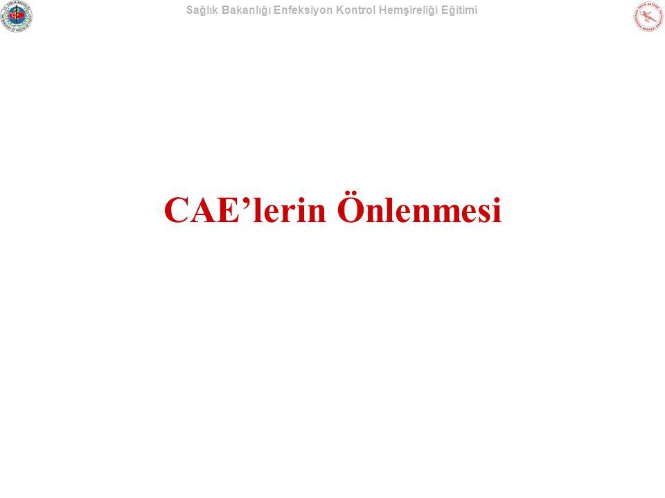 Sağlık Bakanlığı Enfeksiyon Kontrol Hemşireliği Eğitimi CAE'lerin Önlenmesi