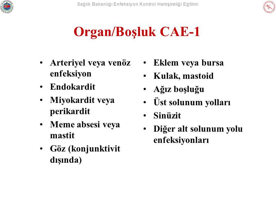Sağlık Bakanlığı Enfeksiyon Kontrol Hemşireliği Eğitimi Organ/Boşluk CAE-1 Arteriyel veya venöz enfeksiyon Endokardit Miyokardit veya perikardit Meme absesi veya mastit Göz (konjunktivit dışında) Eklem veya bursa Kulak, mastoid Ağız boşluğu Üst solunum yolları Sinüzit Diğer alt solunum yolu enfeksiyonları