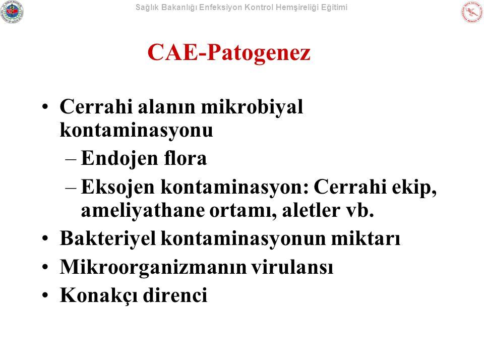 Sağlık Bakanlığı Enfeksiyon Kontrol Hemşireliği Eğitimi CAE-Patogenez Cerrahi alanın mikrobiyal kontaminasyonu –Endojen flora –Eksojen kontaminasyon: Cerrahi ekip, ameliyathane ortamı, aletler vb.