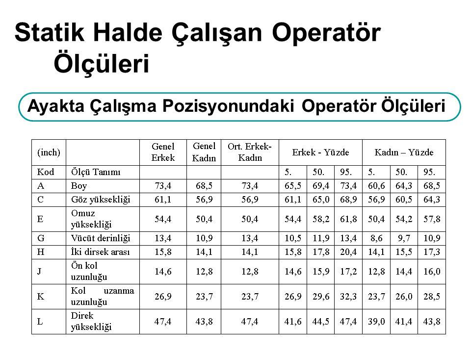 Ayakta Çalışma Pozisyonundaki Operatör Ölçüleri Statik Halde Çalışan Operatör Ölçüleri