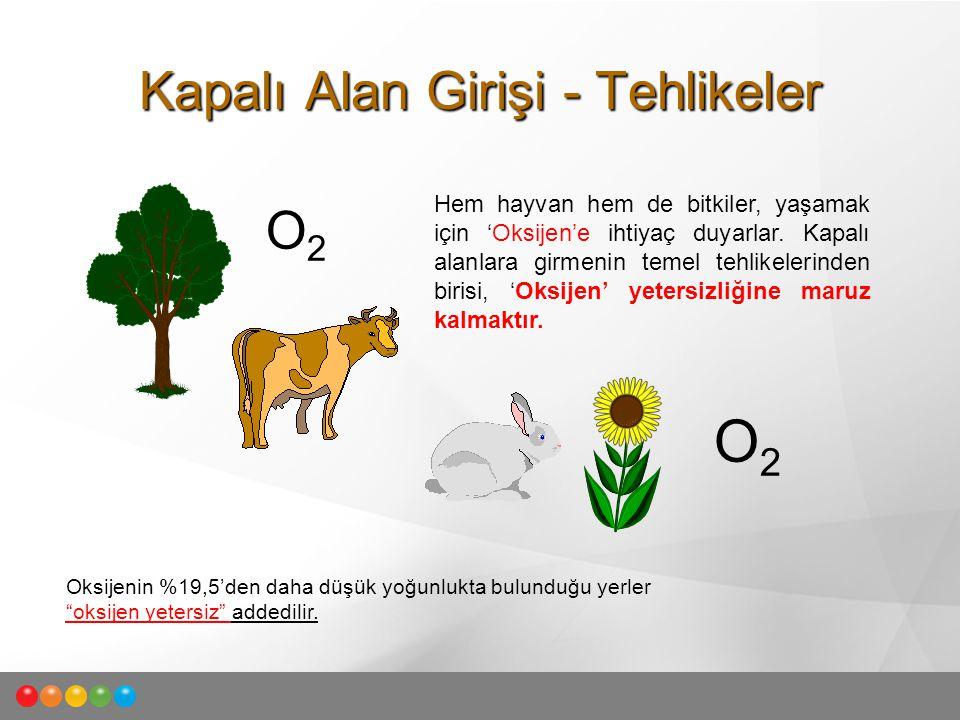 Kapalı Alan Girişi - Tehlikeler Hem hayvan hem de bitkiler, yaşamak için 'Oksijen'e ihtiyaç duyarlar. Kapalı alanlara girmenin temel tehlikelerinden b