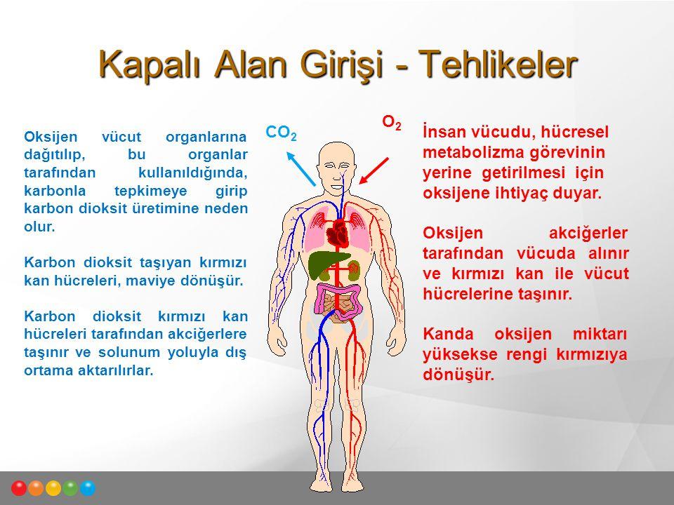 İnsan vücudu, hücresel metabolizma görevinin yerine getirilmesi için oksijene ihtiyaç duyar. Oksijen akciğerler tarafından vücuda alınır ve kırmızı ka