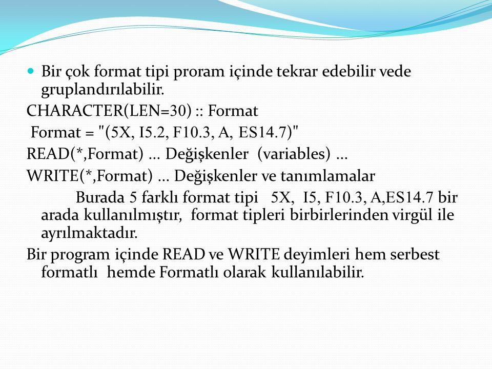 Bir çok format tipi proram içinde tekrar edebilir vede gruplandırılabilir.
