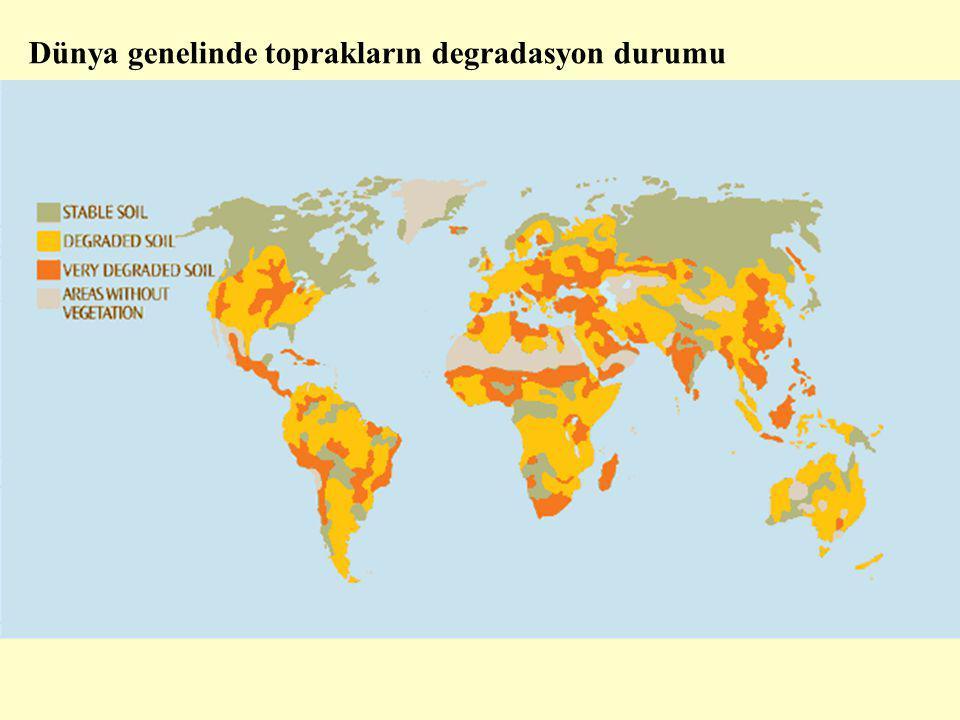 Dünya genelinde toprakların degradasyon durumu