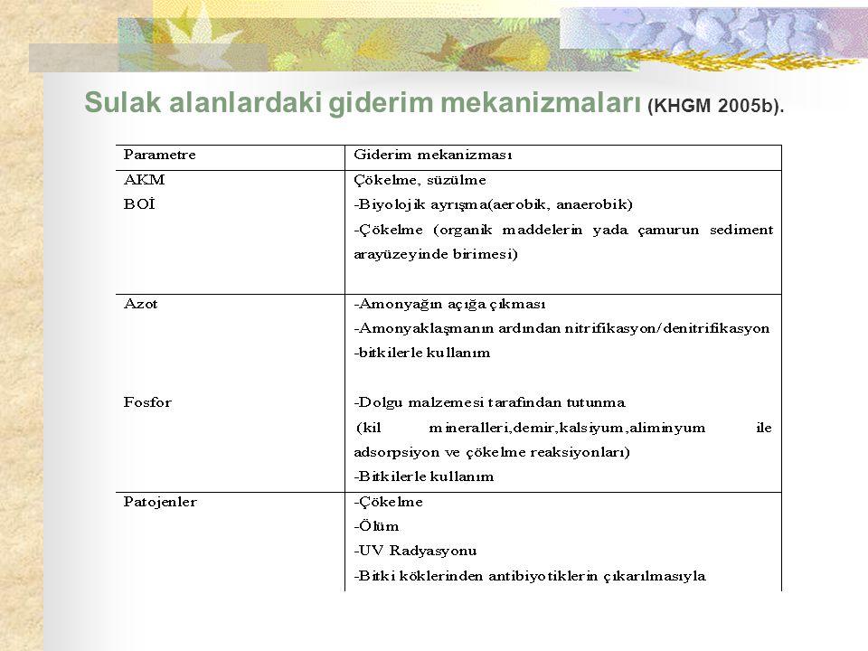 Sulak alanlardaki giderim mekanizmaları (KHGM 2005b).