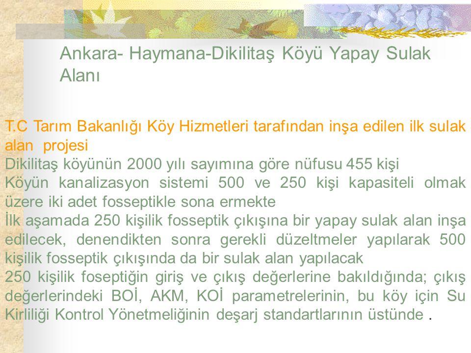 Ankara- Haymana-Dikilitaş Köyü Yapay Sulak Alanı T.C Tarım Bakanlığı Köy Hizmetleri tarafından inşa edilen ilk sulak alan projesi Dikilitaş köyünün 20